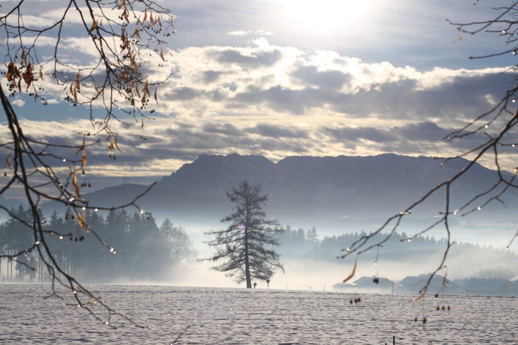 winter_teisendorf_gut_edermann